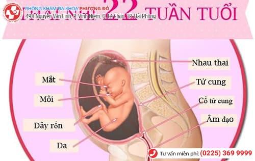 Sự thật về đình chỉ thai nghén 22 tuần bạn cần biết